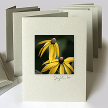 Michigan Wildflower Cards